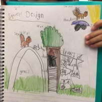 Grade 1 Squirrel Study and Engineering Designs 2